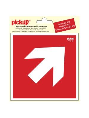 Veiligheidspictogram - Richtingspijl 45g - vinyl